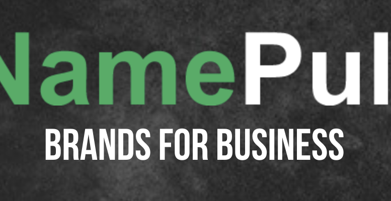 Domain Names Owned by Name Pull